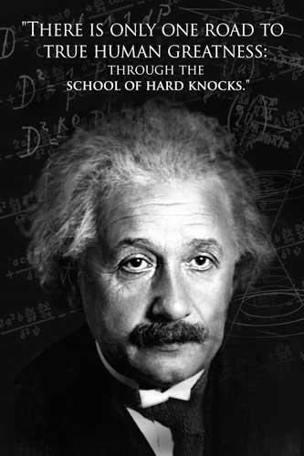 506640_Einstein--Human-Greatness.jpg (333×500)